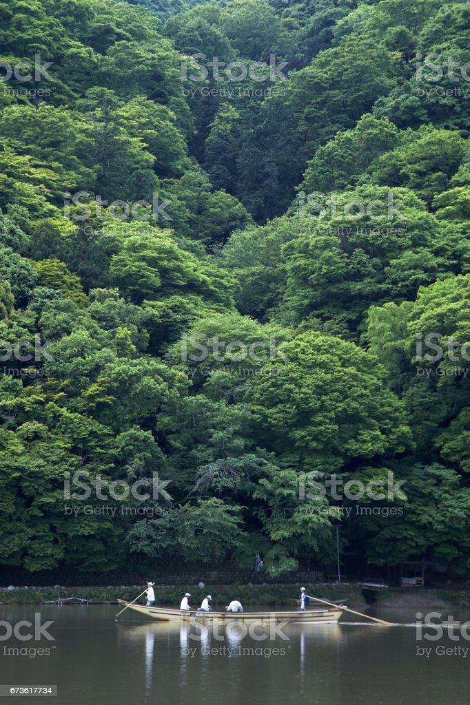Kyoto saga-field stock photo