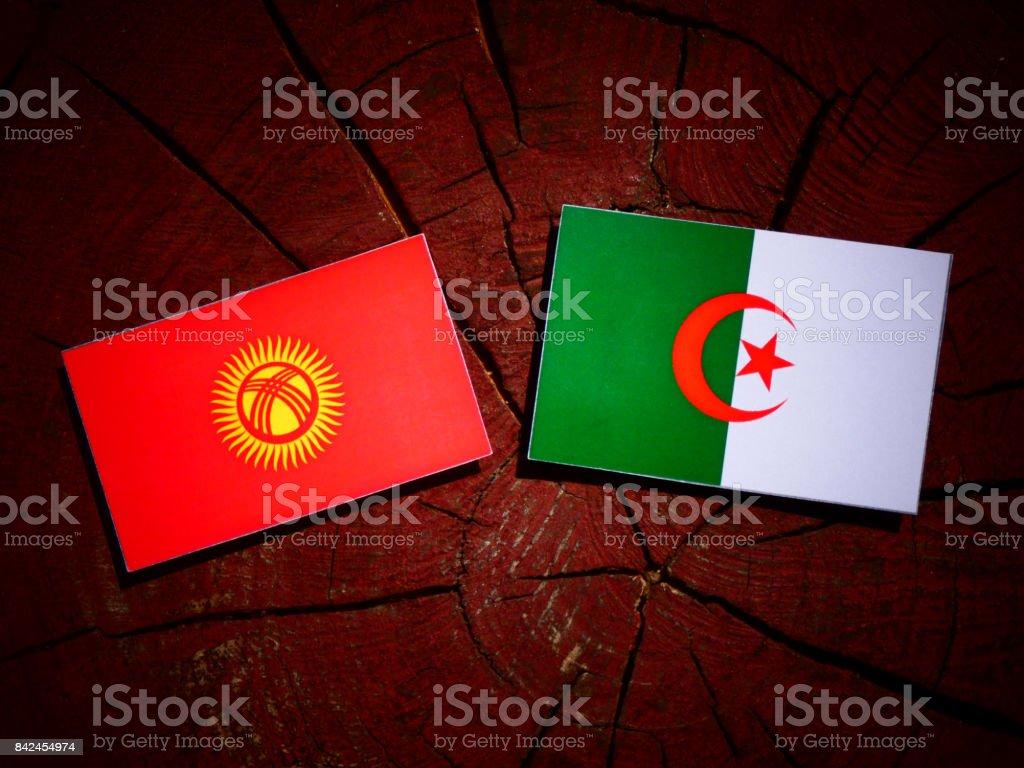Kyrgyzstan flag with Algerian flag on a tree stump isolated stock photo