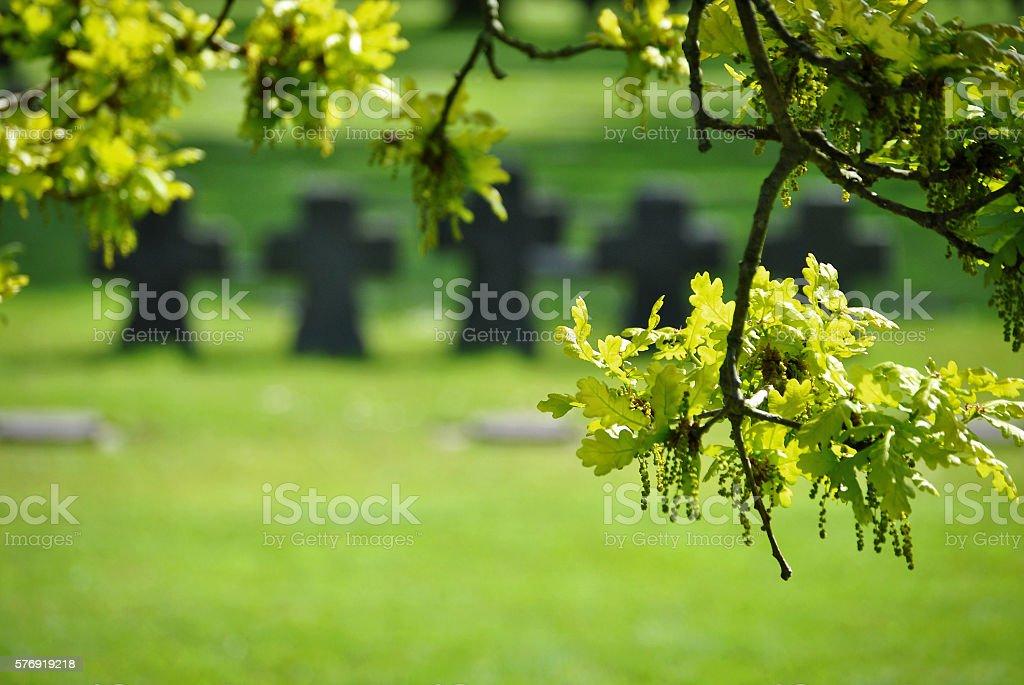 La Cambe German war cemetery stock photo