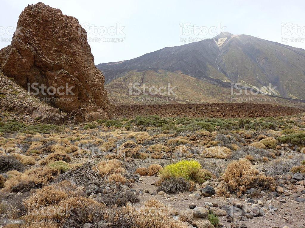 La Canadas, Teide Volcano national park, Tenerife stock photo