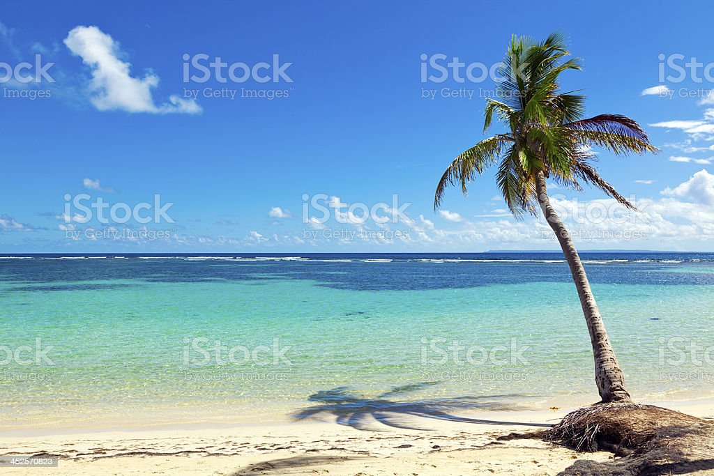 La Caravelle caribbean sea beach, Guadeloupe island stock photo
