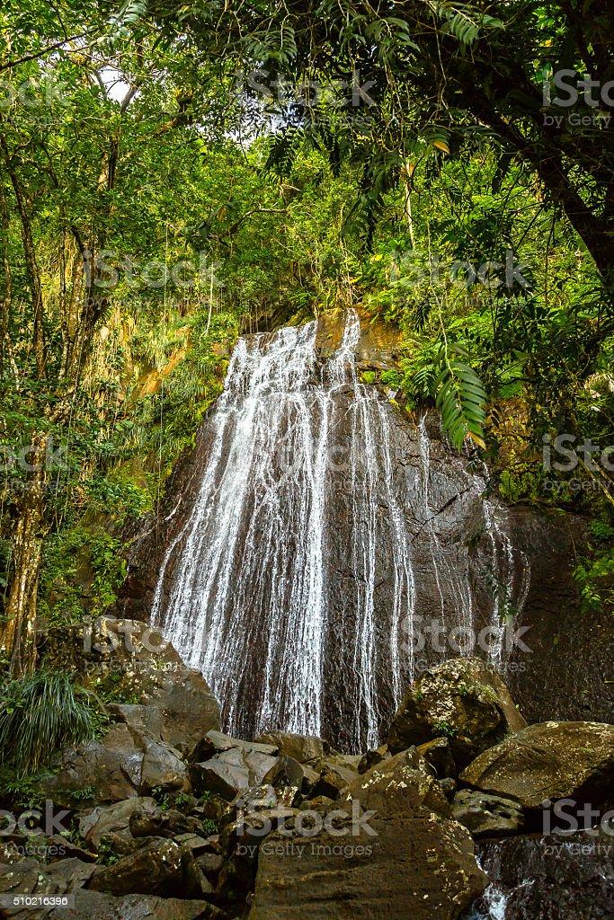 La Coca Falls in El Yunque stock photo
