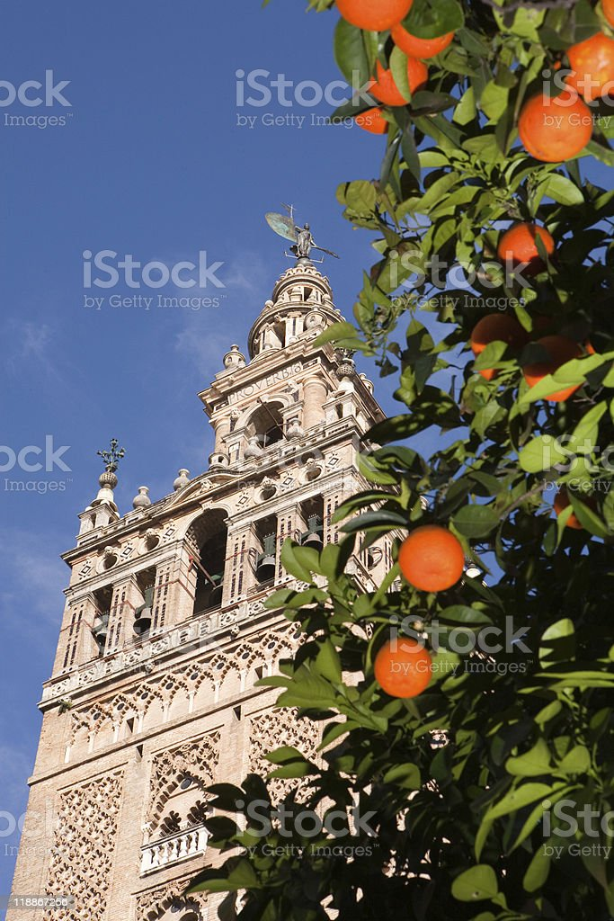 La Giralda and oranges royalty-free stock photo