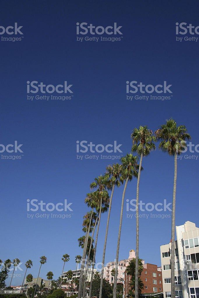 La Jolla California royalty-free stock photo