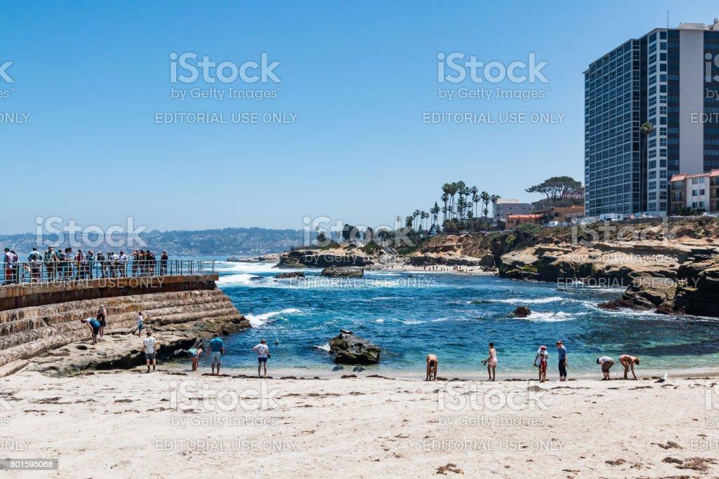 La Jolla Children's Pool with Surrounding Hotels stock photo