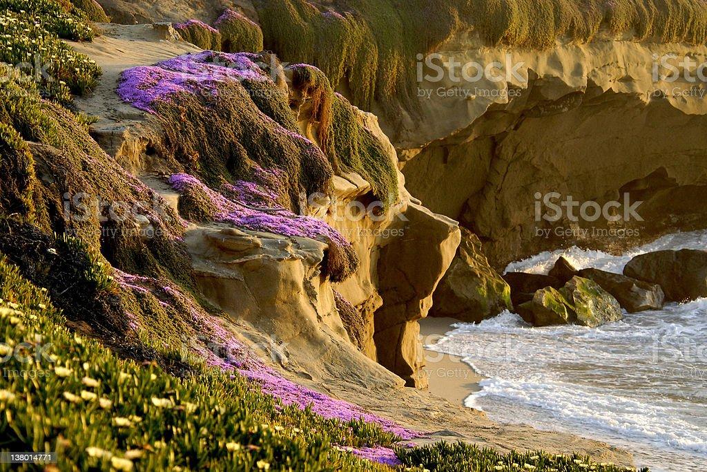 La Jolla Cliffs royalty-free stock photo