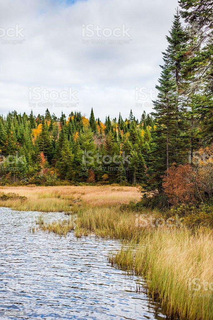 La Mauricie National Park Autumn colors stock photo