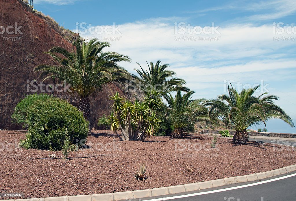 La Palma 2013 - Ausfahrt Mirador stock photo