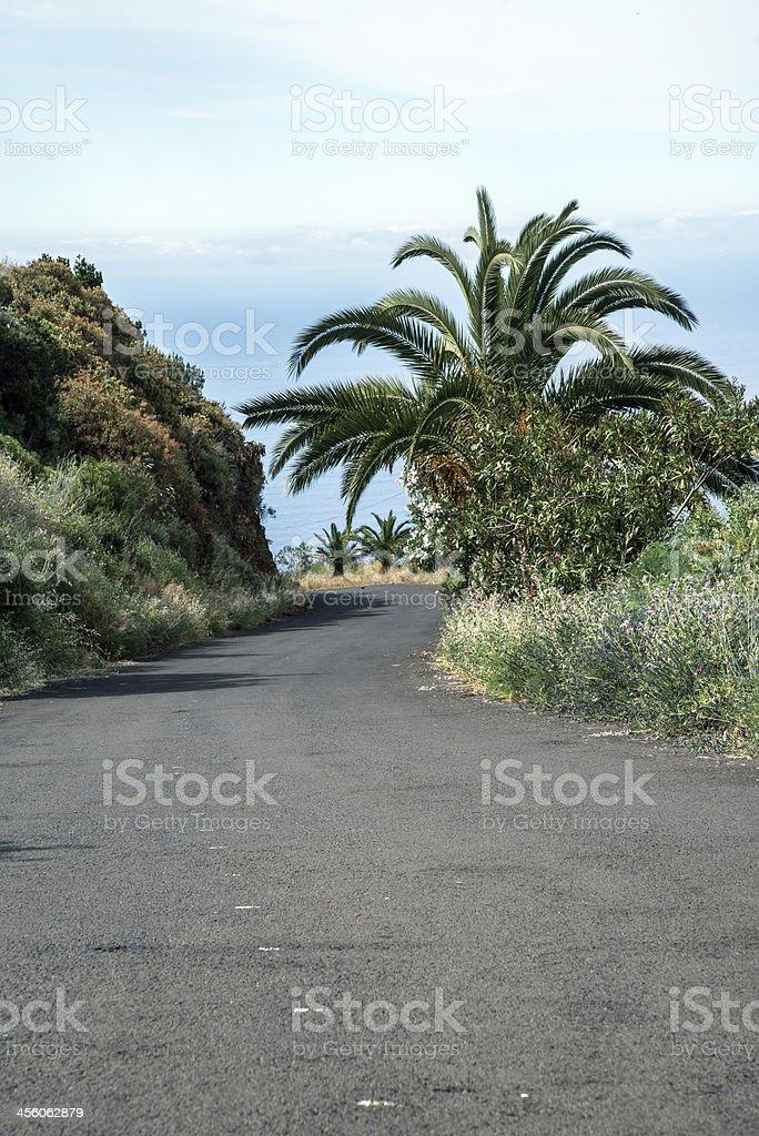 La Palma 2013 - Bergstrasse stock photo