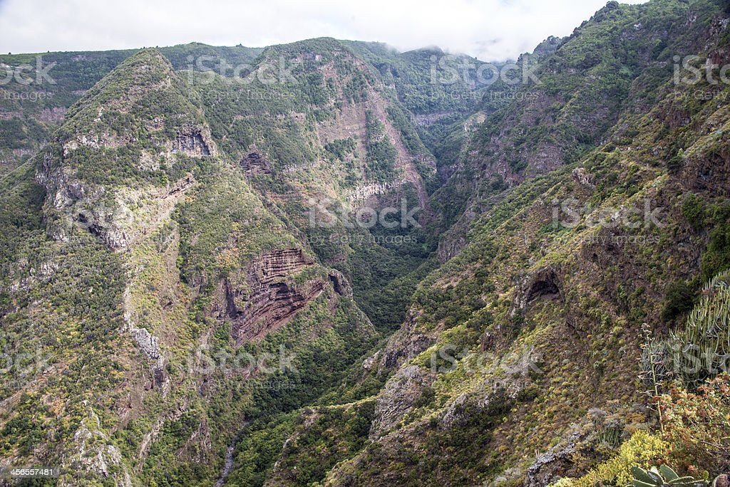 La Palma 2013 - Schlucht bei Las Tricias stock photo