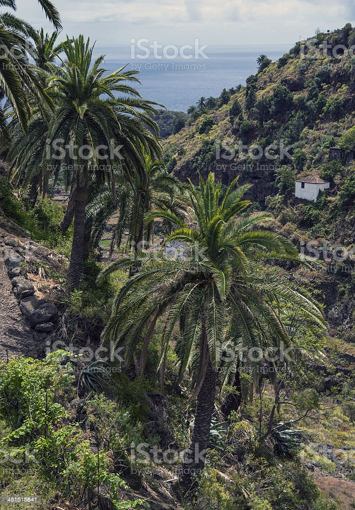 La Palma 2013 - Meerblick von Las Nieves stock photo