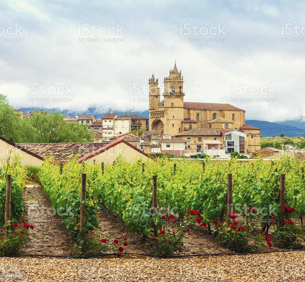 La Rioja Wine Country stock photo