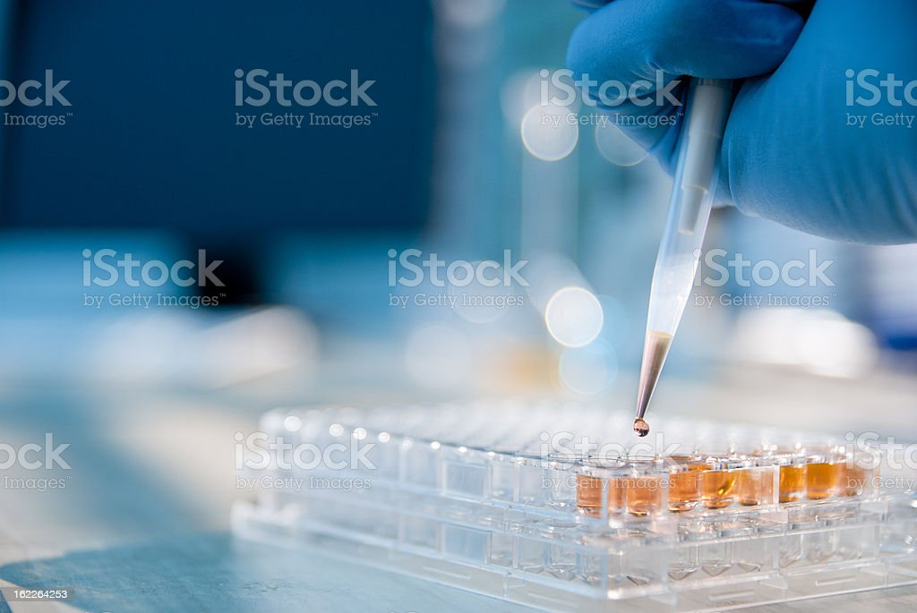 Lab Experiment stock photo