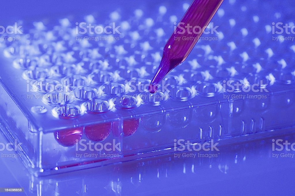 Lab Microplate royalty-free stock photo