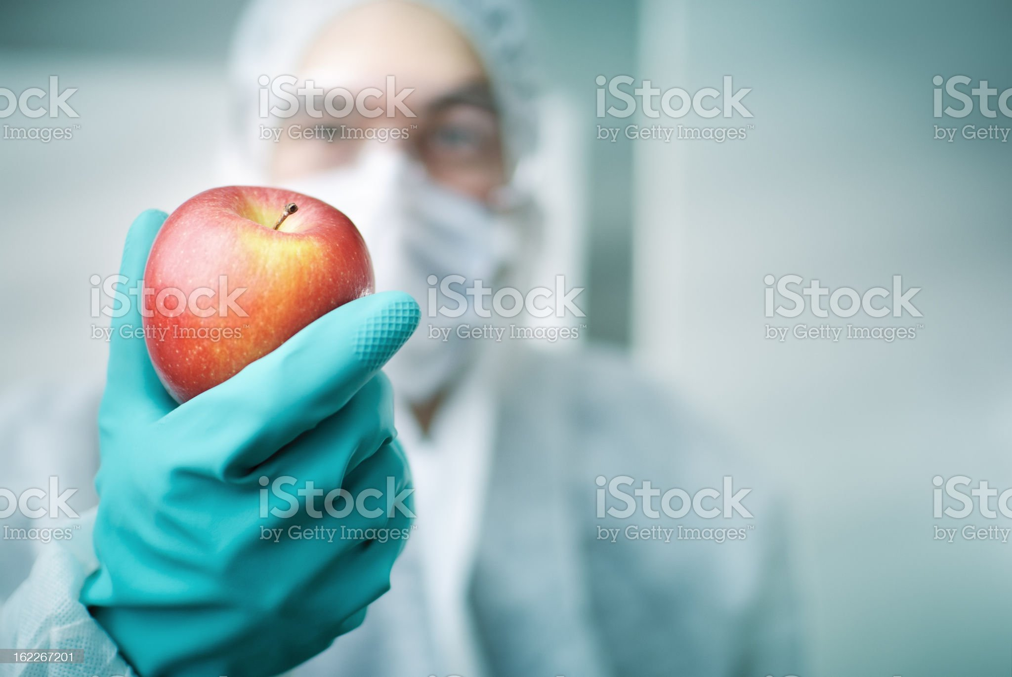 Lab Worker Holding Apple royalty-free stock photo