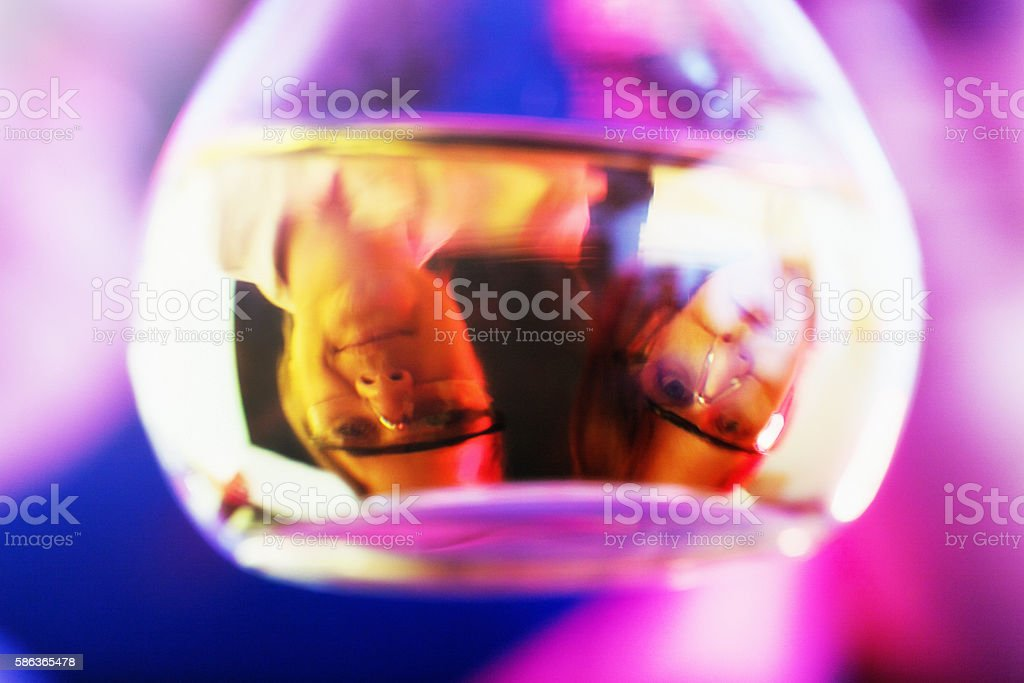 Lab workers seen upside down, refracted in fluid in flask stock photo