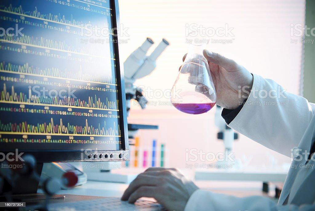 Laboratory Experiment royalty-free stock photo