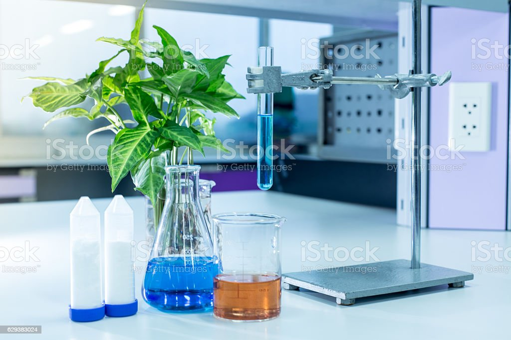 Laboratory glassware, bottle, flasks for experiment in lab. stock photo