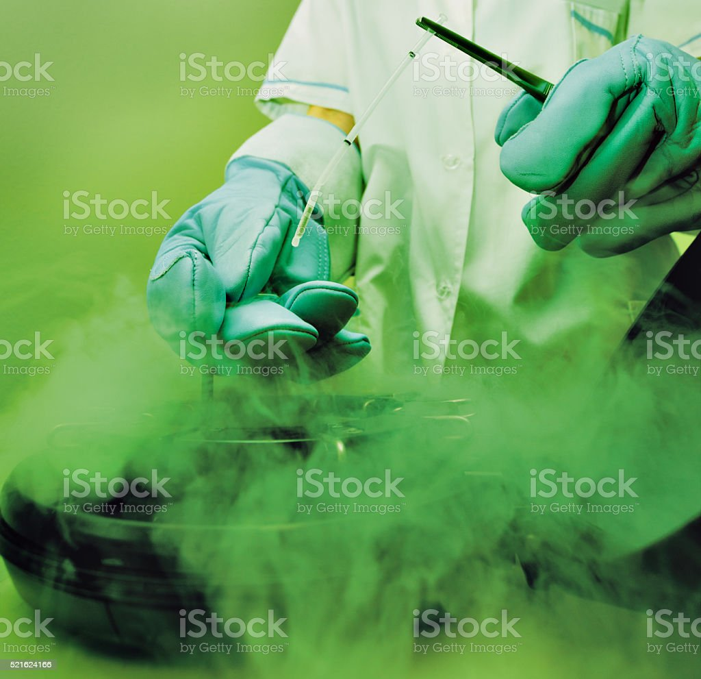 laboratory liquid nitrogen bank sperm eggs stock photo