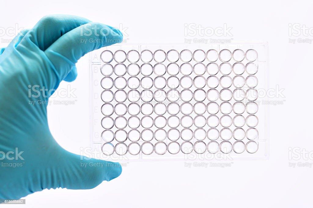 Laboratory micropate stock photo