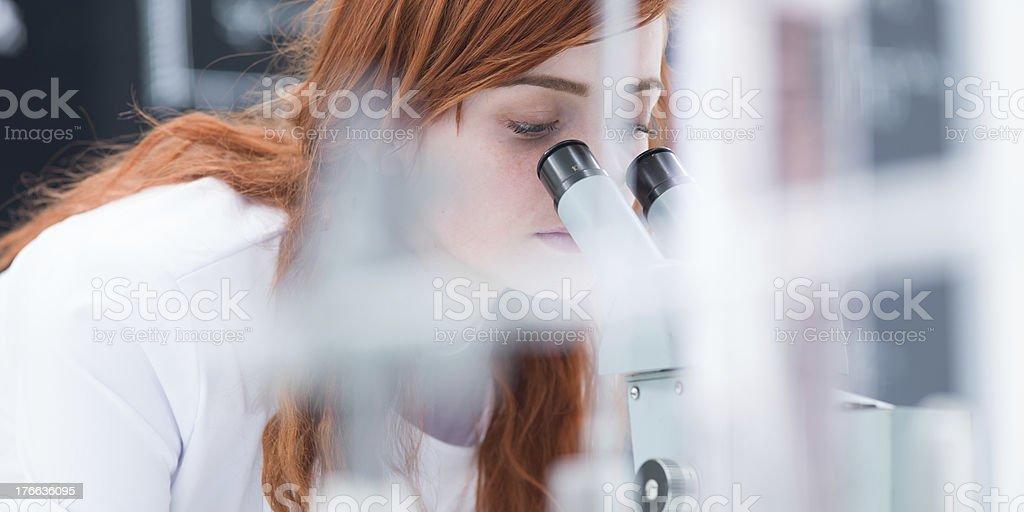 laboratory microscope analysis royalty-free stock photo