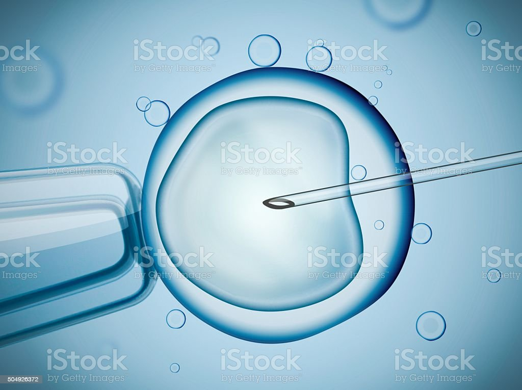 Laboratory microscopic research of IVF (in vitro fertilization). vector art illustration