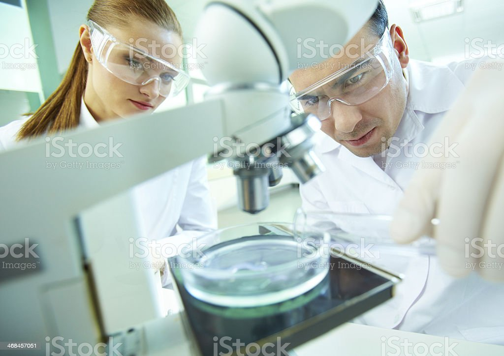 Laboratory research royalty-free stock photo
