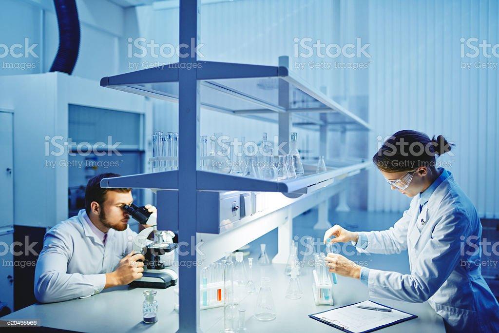 Laboratory studies stock photo