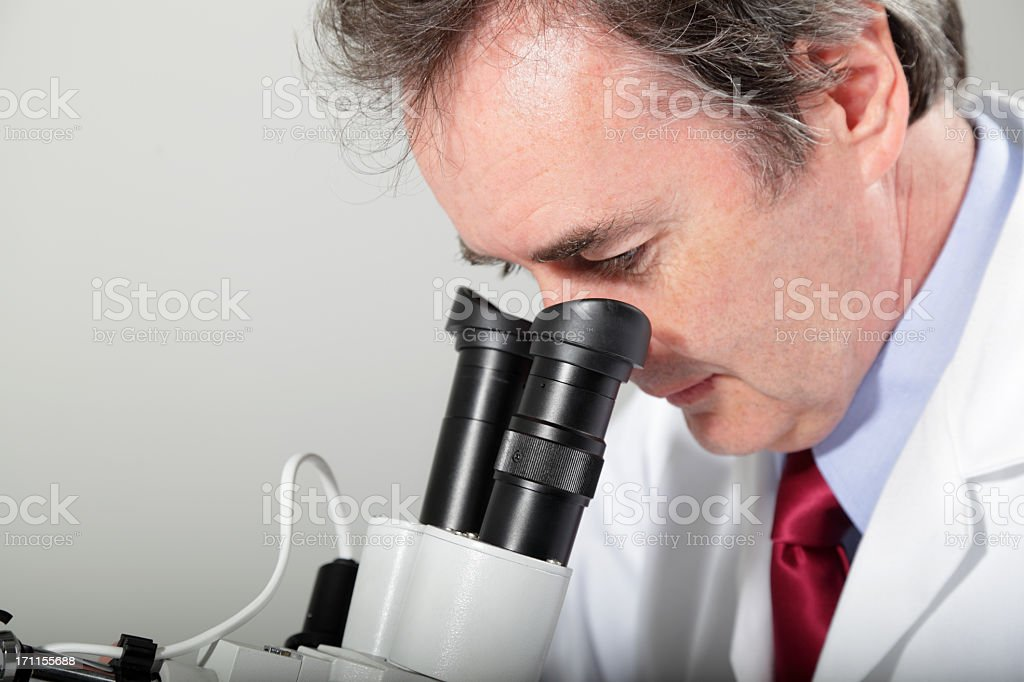 laboratory technician examines through microscope, stereoscope stock photo