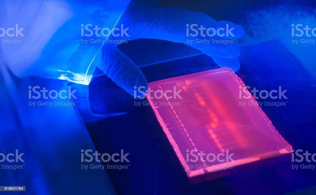 laboratory ultraviolet light box during  electrophoresis for detection of DNA stock photo