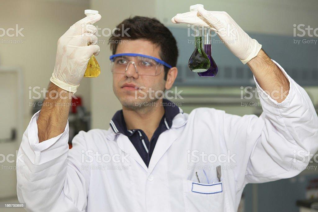 Laboratory worker cheking samples royalty-free stock photo
