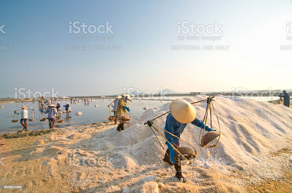 Laborers work at Hon Khoi Salt Fields, Nha Trang, Vietnam stock photo