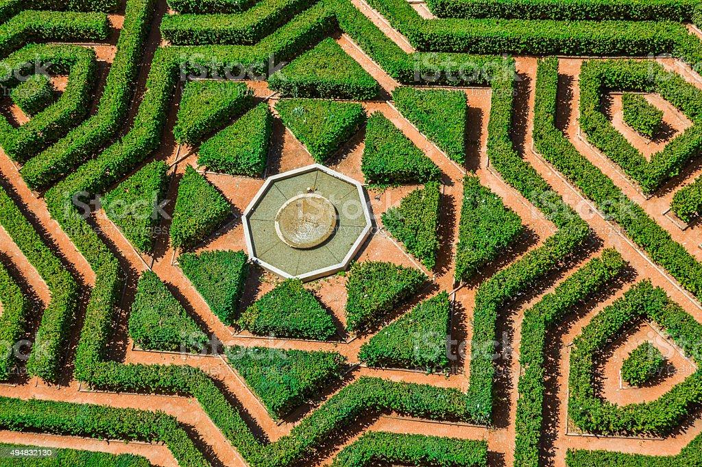 Labyrinth Maze Hedge stock photo