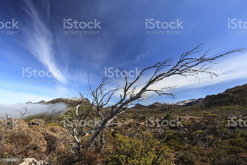 Labyrinth, overland track royalty-free stock photo