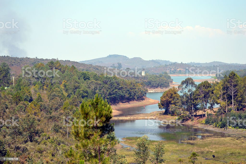Lac au milieu de la forêt stock photo