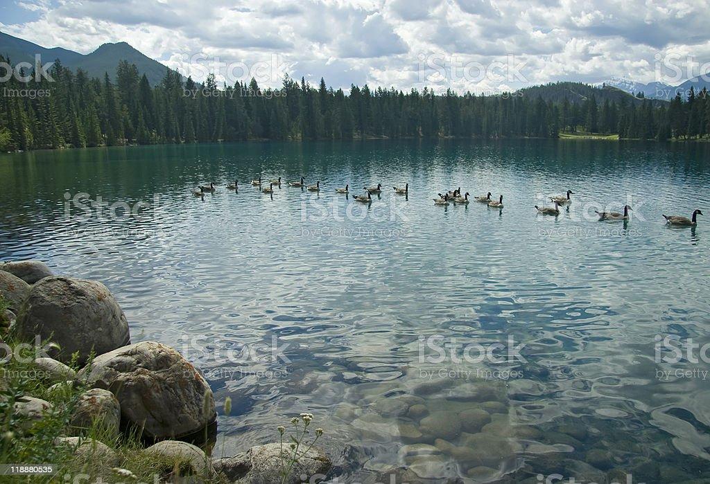 Lac Beauvert, Jasper National Park stock photo