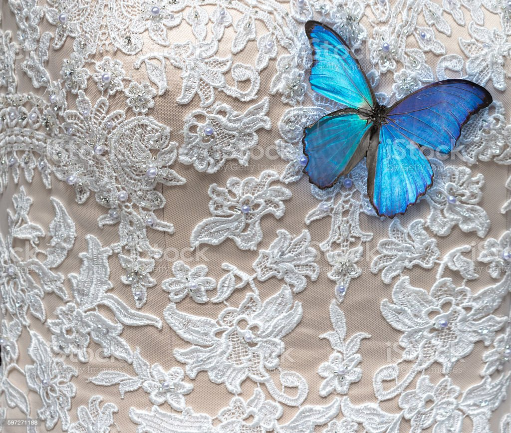 Lace dress detail with blue morpho butterfly stock photo