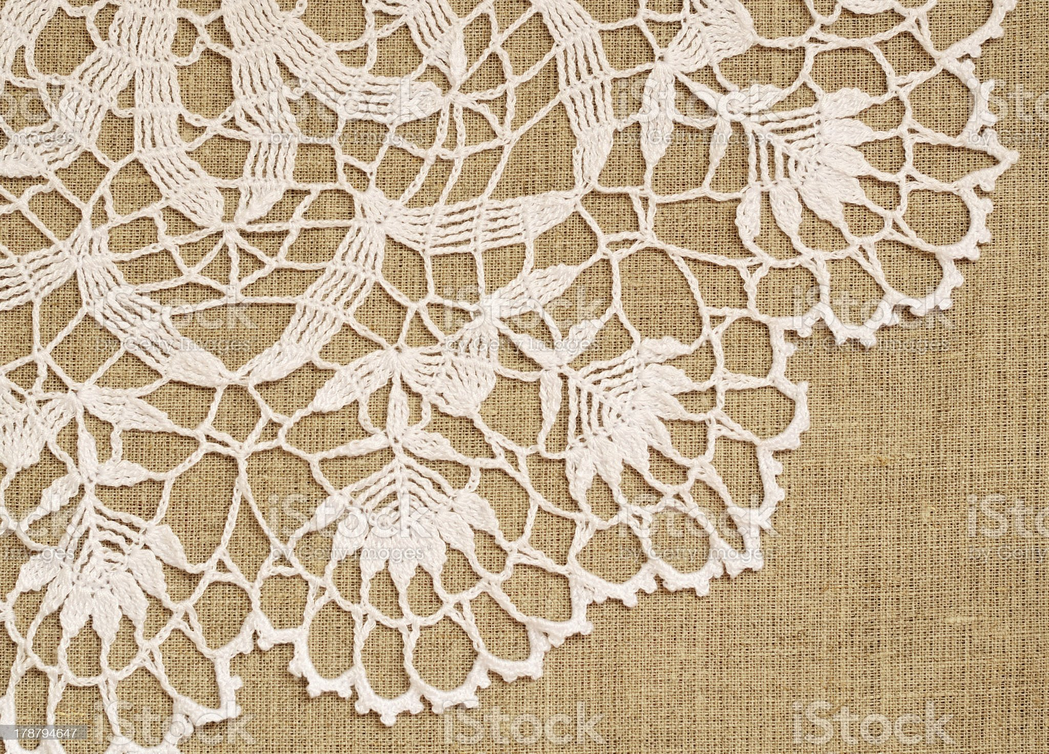 Lace on canvas royalty-free stock photo