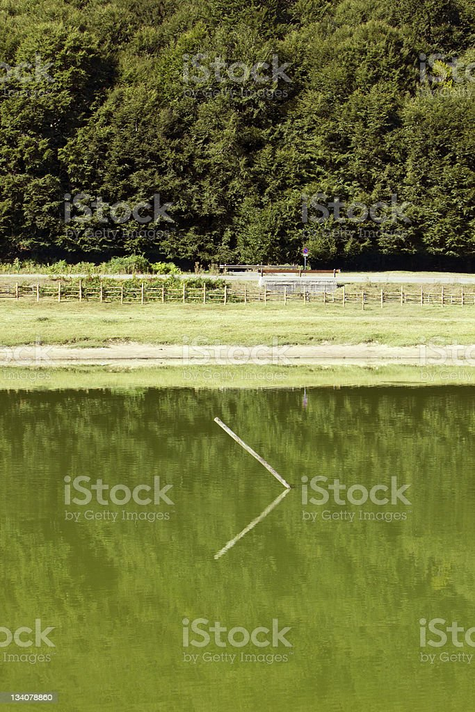 Laceno, Basilicata, Italy, stick in the lake stock photo