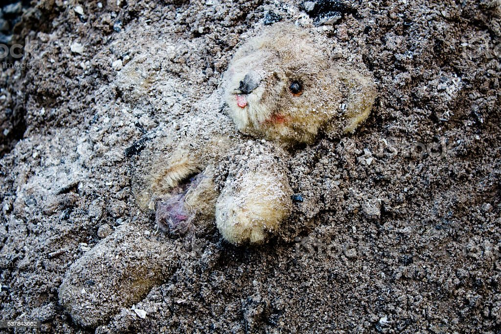 Lacerated and abandoned teddy bear stock photo
