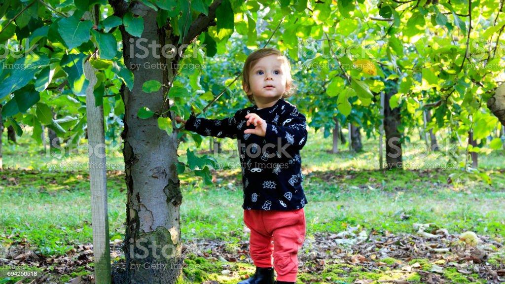 Lachendes Baby spielt im Garten stock photo