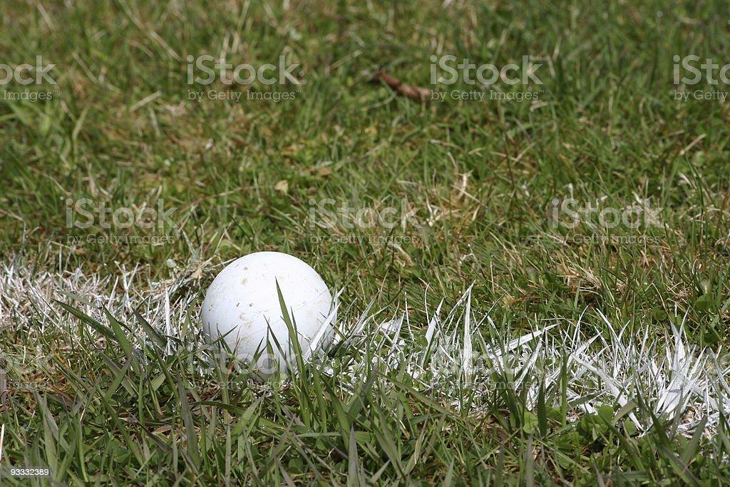 lacrosse ball stock photo