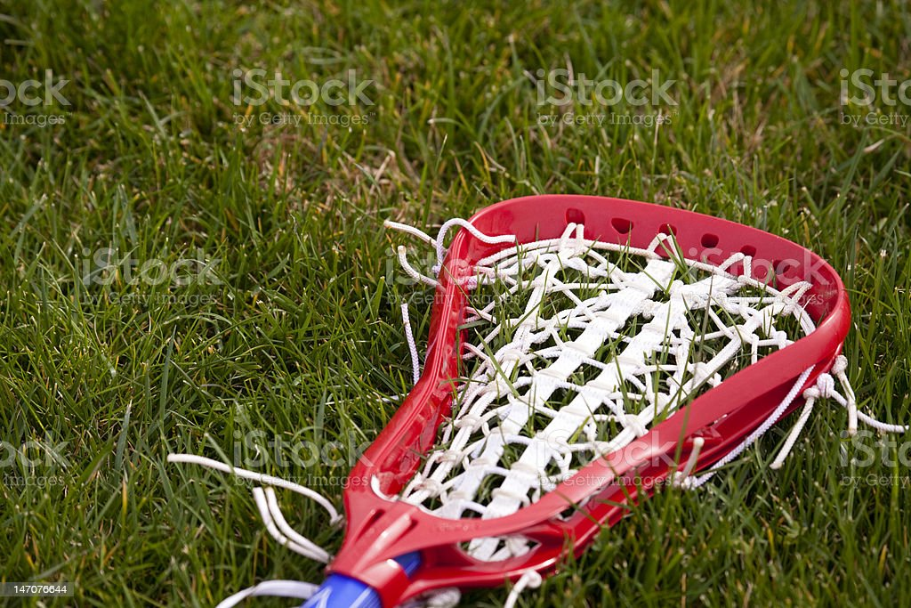 Lacrosse Head royalty-free stock photo