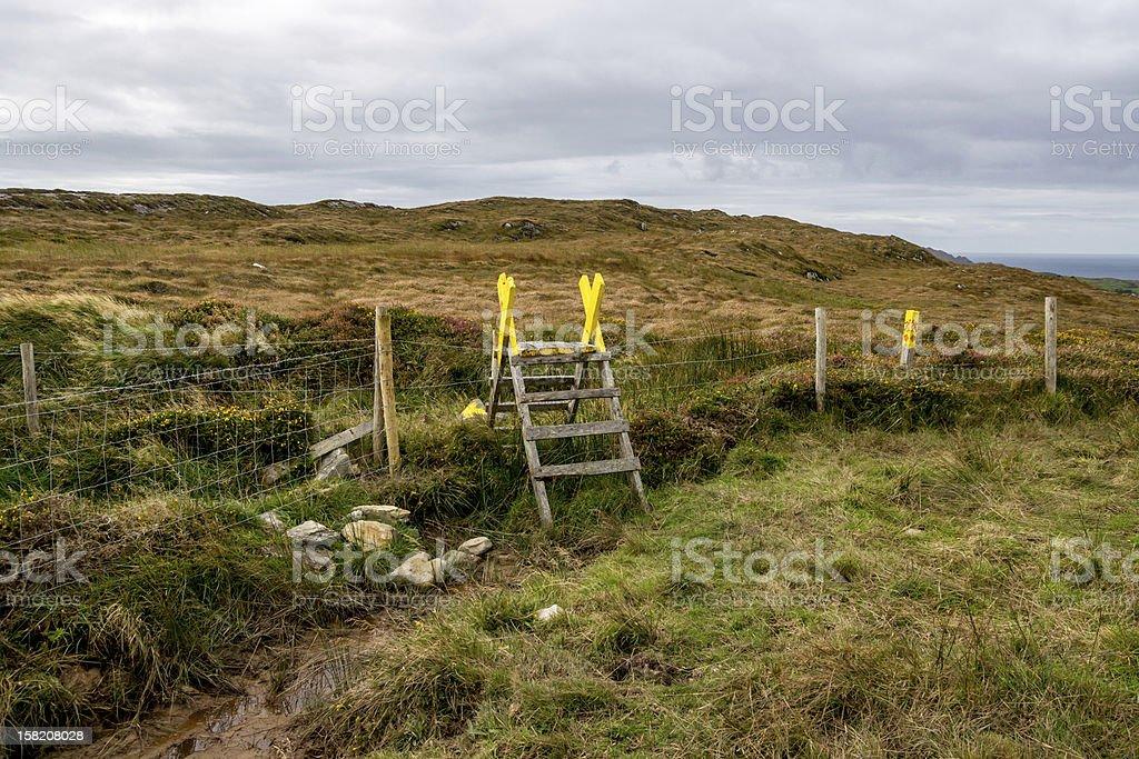 Ladder Stile in Ireland stock photo