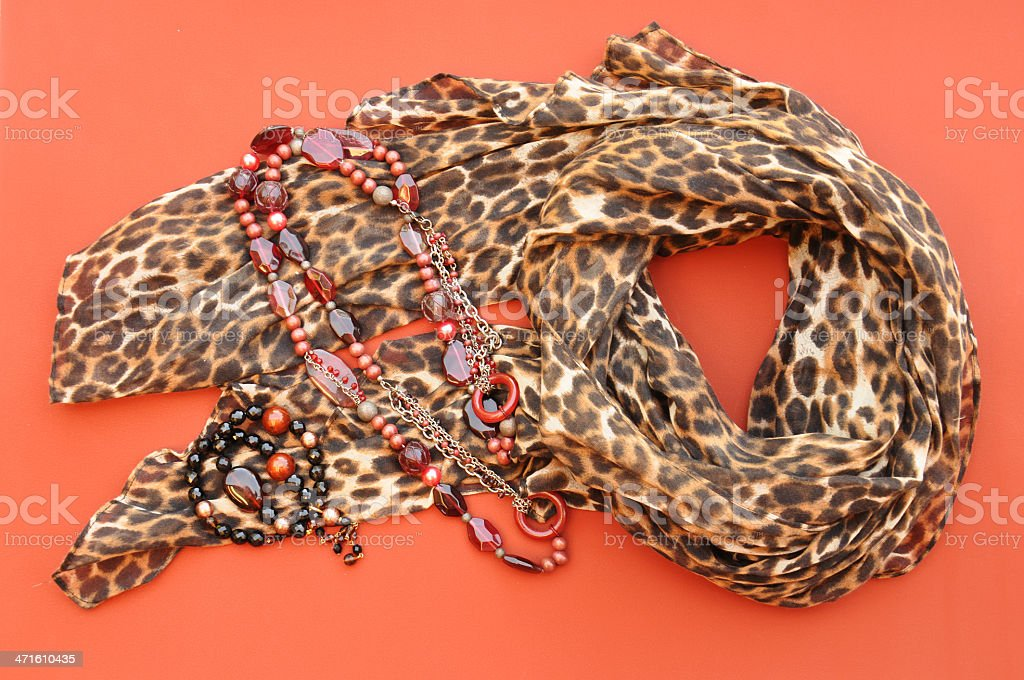 Ladies Animal Print Scarf & Jewelry royalty-free stock photo
