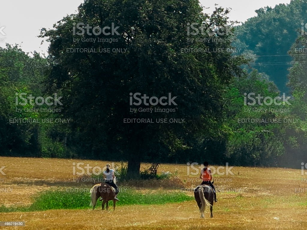 ladies are riding horse at countryside near speyer germany stock photo