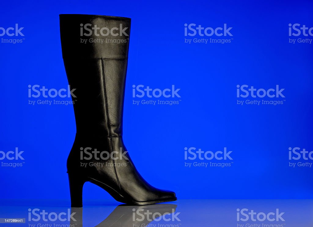 Ladies shoes in genuine leather royalty-free stock photo