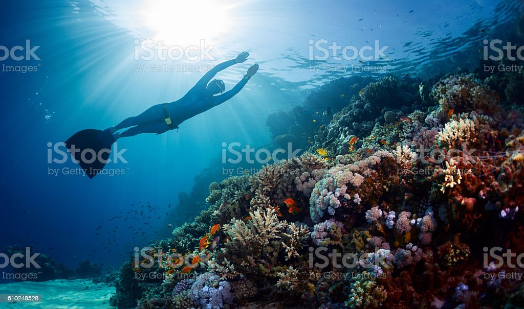 Lady freediver gliding underwater stock photo