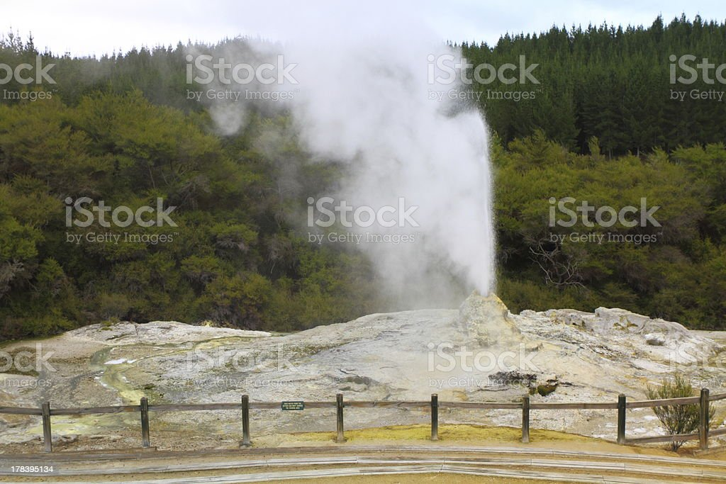 Lady Knox Geyser royalty-free stock photo