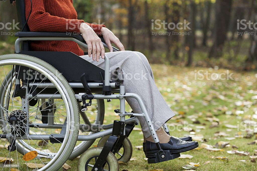 Lady on wheelchair in the forest royalty-free stock photo